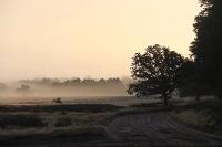 Fotokaart zonsopgang