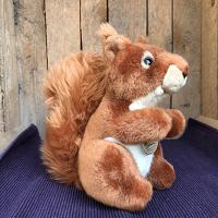 Eekhoorn, ca. 18 cm